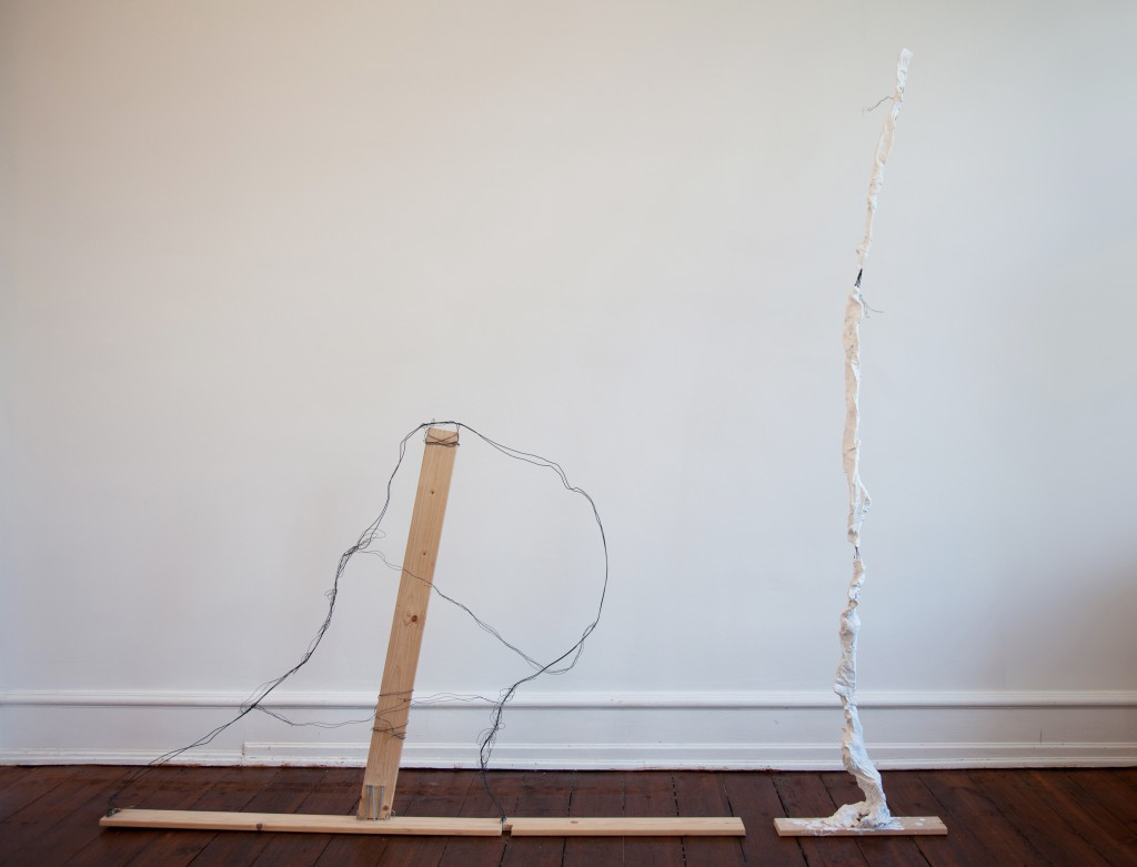 Nearly Not There, 2012, mixed media, 173 x 167 x 23 cm